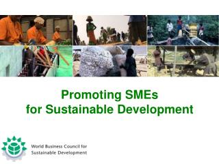 Promoting SMEs  for Sustainable Development