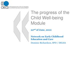 The progress of the Child Well-being Module