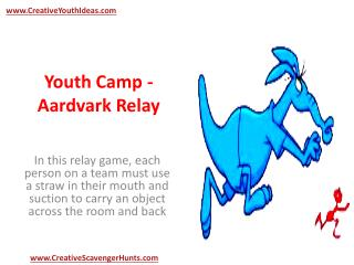 Youth Camp - Aardvark Relay