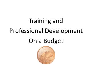 Training and  Professional Development On a Budget
