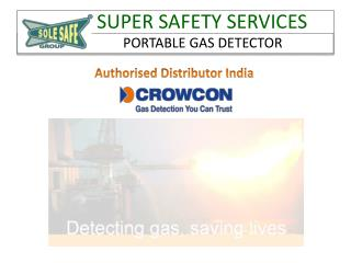 Portable Gas Detector, Multi and Single Gas Detector