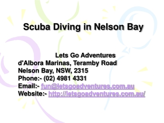 Free Scuba Diving in Nelson Bay, Port Stephens Australia