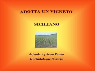 adotta un vigneto siciliano