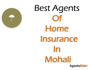 Best agent for home insurance in mohali