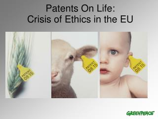 Patents On Life:  Crisis of Ethics in the EU
