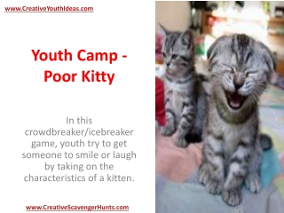 Youth Camp - Poor Kitty