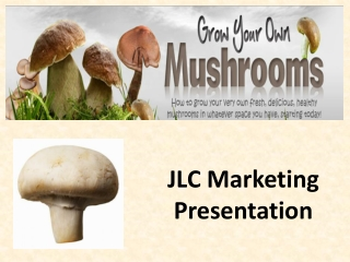 How to Grow Mushrooms