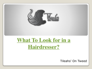 What To Look for in a Hairdresser?