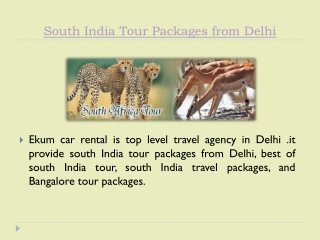 South India Tour Packages from Delhi