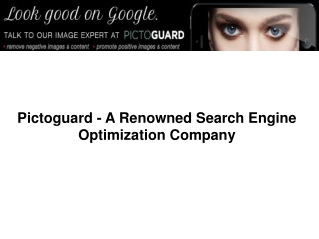 Pictoguard - A Renowned Search Engine Optimization Company