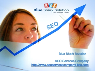 SEO Services Company and Their Utility in Increasing Website