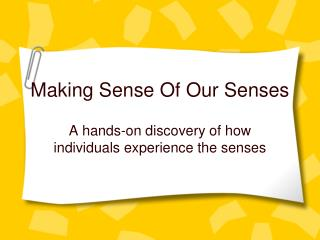 Making Sense Of Our Senses