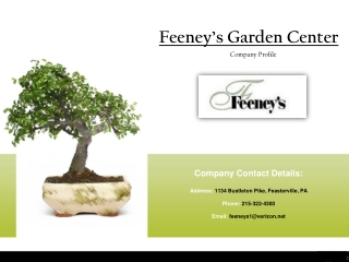 Feeney's Company Profile