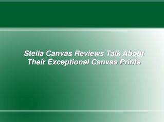 Stella Canvas Reviews