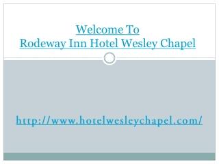Wesley Chapel cheap hotel