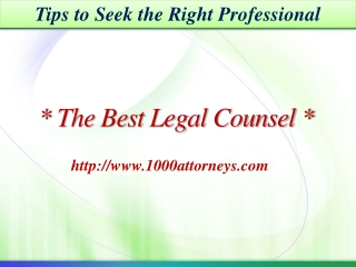 The Best Legal Counsel