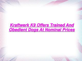 Kraftwerk K9 Offers Trained And Obedient Dogs At Nominal Pri
