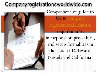 company registration Delaware Guide