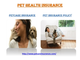 Pet Insurance for your Dog or Cat