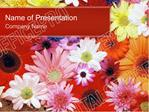 Flowers PowerPoint Template Backgrounds