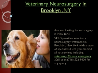 Veterinary Neurosurgery
