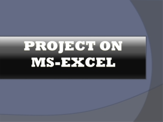 MS-EXCEL Assignment Help