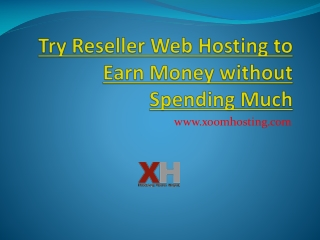 Try Reseller Web Hosting to Earn Money without Spending Much