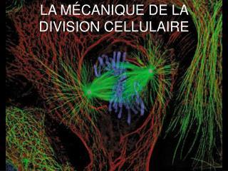 LA MÉCANIQUE DE LA DIVISION CELLULAIRE