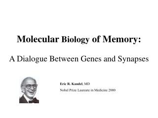 Molecular  Biology  of Memory: