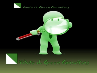 WnG Consulting Provide better-quality SEO Services