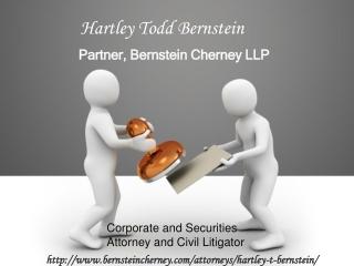 Hartley Bernstein LLP Firm