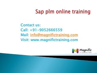 sap plm online training in australia