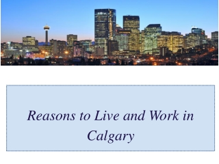 Reasons to Live and Work in Calgary
