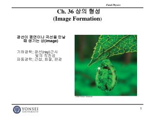 Ch. 36  상의 형성 (Image Formation )