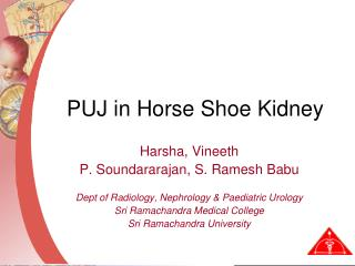 PUJ in Horse Shoe Kidney