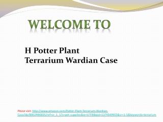 Amazon HPotter Plant Terrarium Wardian Case