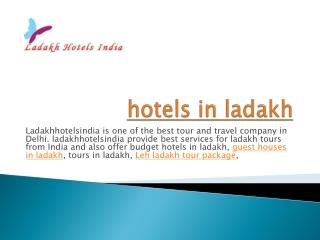 hotels in ladakh
