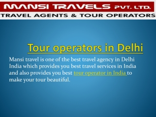 tour operators in delhi