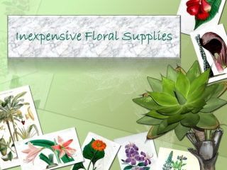 Inexpensive Floral Supplies