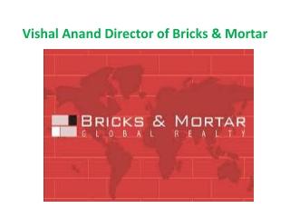 Vishal Anand Bricks