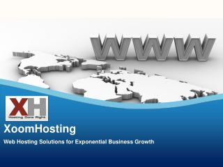 Web Hosting Solutions for Exponential Business Growth