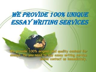 We provide 100% Unique essay writing services