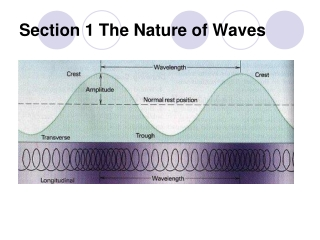 Section 1 The Nature of Waves