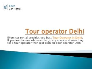 Tour operator delhi