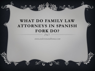 What Do Family Law Attorneys in Spanish Fork Do?