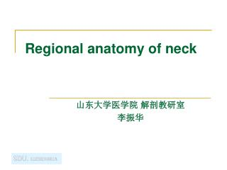 Regional anatomy of neck
