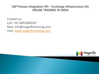 sap pi xi online training in india@magnifictraining.com