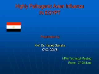Highly Pathogenic Avian Influenza IN EGYPT