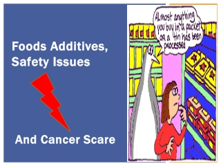 Food Additives, Safety Issues and Cancer