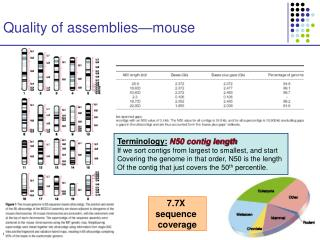 Quality of assemblies—mouse